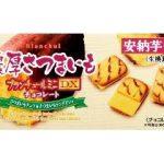 【期間限定】ブランチュールミニDX濃厚さつまいもチョコレート(ブルボン)商品分析!