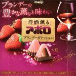洋酒薫アポロ ブランデーガナッシュ